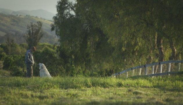 Interesante documental de negocios basado en granjeros orgánicos
