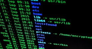 previsiones Digicert sobre seguridad y IoT 2020