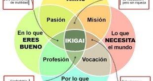 Ikigai o aquello que le da sentido a tu vida