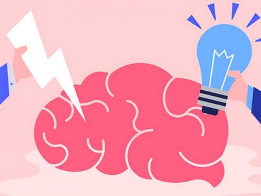cerebro viejo y neuroplástico