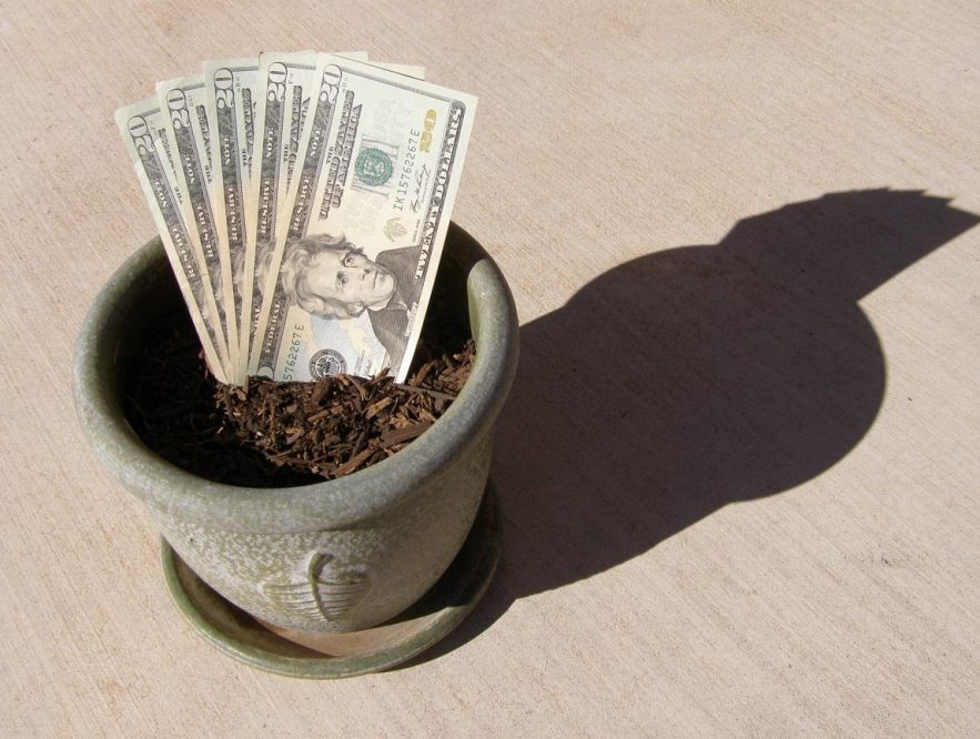 Venture Debt, la alternativa de inversión para pymes