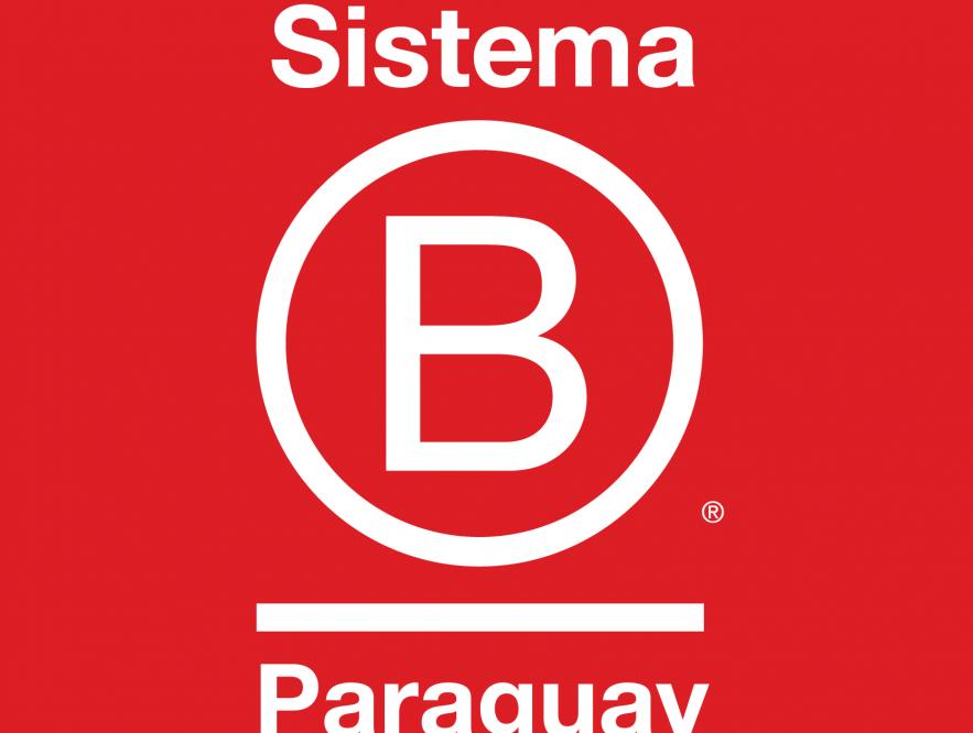 Camino +B, el programa de Sistema B